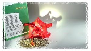 Apoyar Tee neben einer Hibiskusblüte