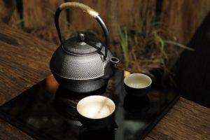 apoyartee tee und der Stoffwechsel